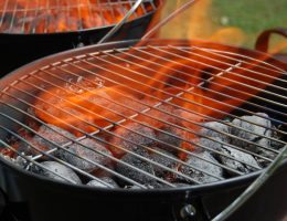 How to Light Portable Propane Grill: The Best Tips
